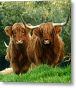 Are You Talking To Us Metal Print