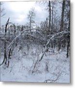 As Winter Returns Metal Print