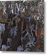 Asil In Shitaki Forest Metal Print by Al Goldfarb