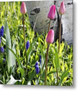 Aspen And Tulips Metal Print