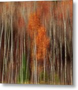 Aspen Motion II, Sturgeon Bay Metal Print