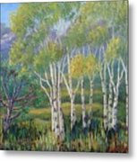 Aspens In The Rockies Metal Print
