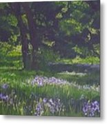 At The Edge Of The Forest  Metal Print