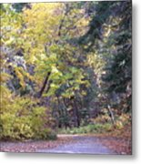 Autum Colors Metal Print