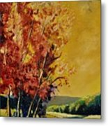 Autumn 68 Metal Print