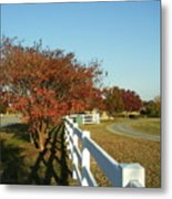 Autumn Afternoon With Shadows Metal Print