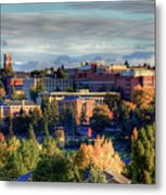 Autumn At Wsu Metal Print by David Patterson