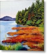 Autumn Bay Marsh Metal Print