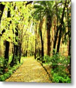 Autumn Corridor Metal Print