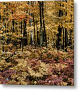Autumn Dampness Metal Print