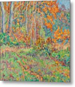 Autumn Forest Path Metal Print