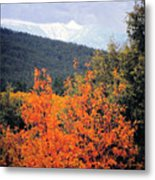 Autumn Glory And Mountain Cathedral Metal Print