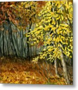 Autumn Hollow I Metal Print