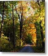 Autumn In Missouri Metal Print