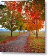 Autumn Journey Metal Print