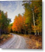 Autumn Lane Metal Print