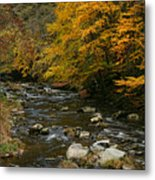 Autumn Mountain Stream Metal Print