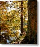 Autumn Perspective Metal Print