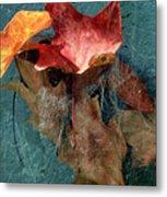 Autumn Seined Metal Print