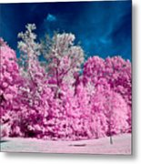 Autumn Trees In Infrared Metal Print