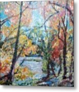 Autumn's Splendor Metal Print