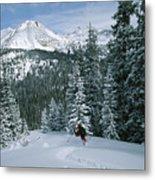 Backcountry Skiing Into An Evergreen Metal Print