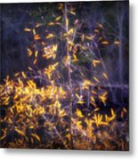 Backlit Beauty Metal Print