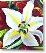 Backlit Lilly Metal Print