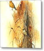Backyard American Goldfinch Metal Print