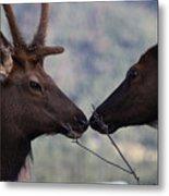 Bambi And Faline Metal Print