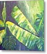 Banan Leaf Metal Print