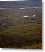 Banff National Park Forest Metal Print