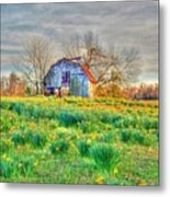 Barn In Field Of Flowers Metal Print by Geary Barr