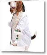 Basset Hound Dog Dressed As A Veterinarian Metal Print