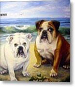 Beach Bullies Metal Print