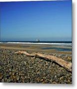 Beach Driftwood Metal Print