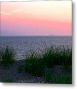 Beach Grass On Long Island Sound Metal Print
