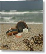 Beach Treasures 1 Metal Print