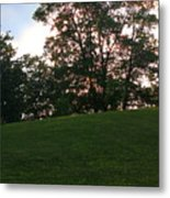 Beautiful Day In The Park Metal Print