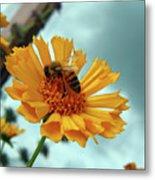 Bee Nice Metal Print