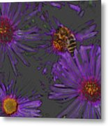 Bee With Asters On Gray Metal Print