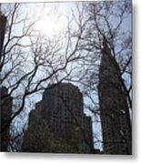 Behind The Trees 1 Metal Print