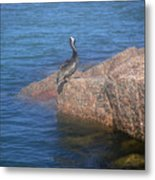 Being One With The Gulf - Ignoring Metal Print