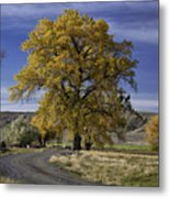 Belfry Fall Landscape 5 Metal Print by Roger Snyder