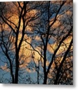 Beyond The Trees Metal Print