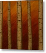 Birch Eyes Metal Print
