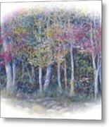 Birch Tree Gathering Metal Print