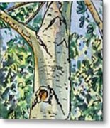 Birch Tree Sketchbook Project Down My Street Metal Print