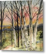 Birch Trees On Canvas Metal Print