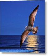 Bird In Moonlight Metal Print